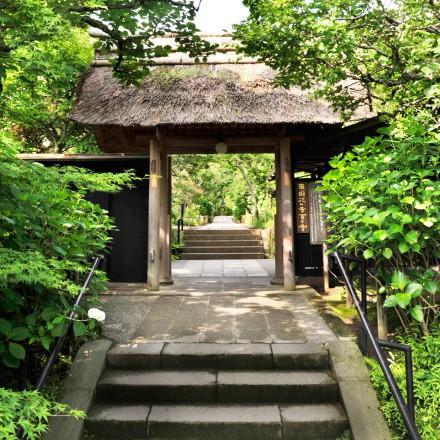 東慶寺イメージ画像