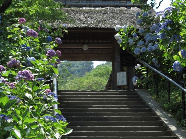 東慶寺の参道前