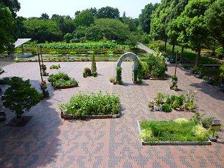 植物園の入り口付近