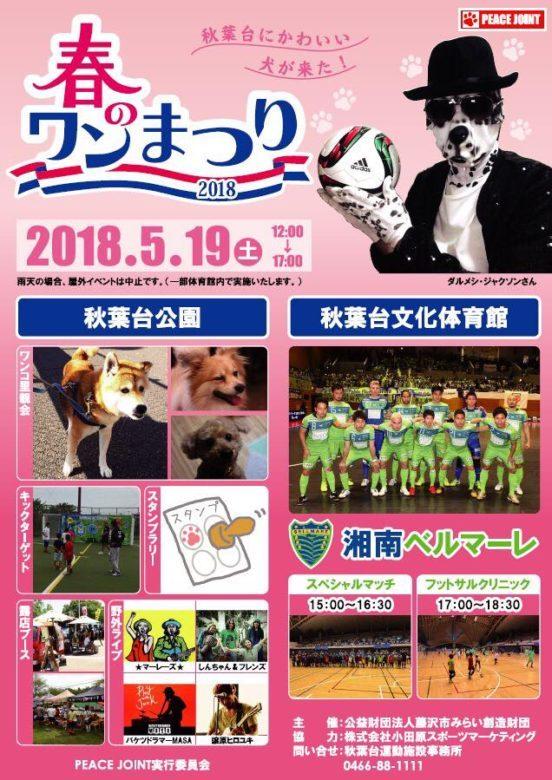 犬猫の殺処分ゼロを目指すイベント「春のワン祭り × 湘南ベルマーレフットサルクラブ」が開催