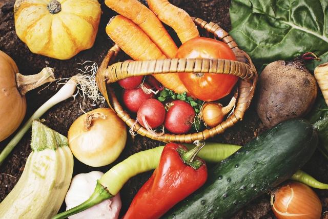 表紙用野菜