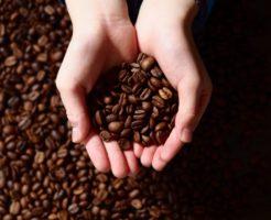 丁寧に焙煎されたコーヒー豆