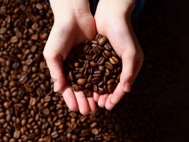 コーヒー好きがオススメする、藤沢近郊のコーヒーロースター4選