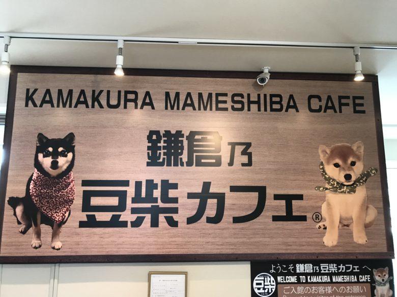 """予約できる?入場方法,料金は? """"鎌倉乃豆柴カフェ""""に行ってみた!"""